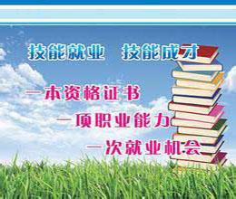 上海中级经济师 专升本零压力培训