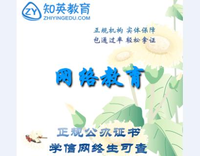 零基础可以报考上海专升本学校吗